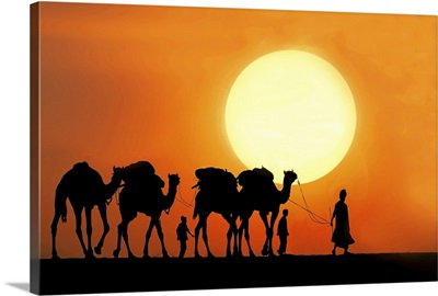 Camel ride at sunset.