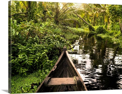 Canoe in the jungle, Kerala, India