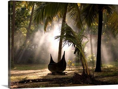 Canoe under palm trees in Kerala, India
