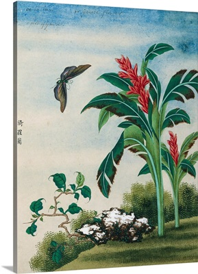 Chinese Watercolor Of A Flowering Plant And A Butterfly