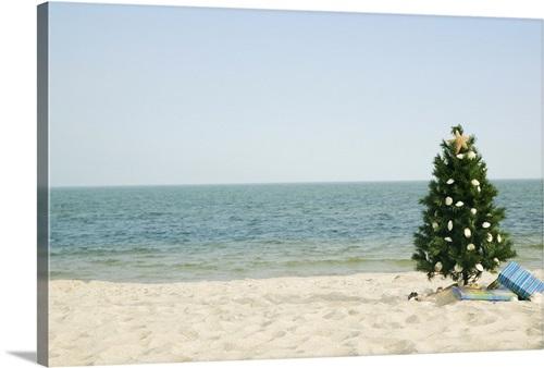 Christmas Tree On Beach Wall Art Canvas Prints Framed Prints Wall Peels Great Big Canvas