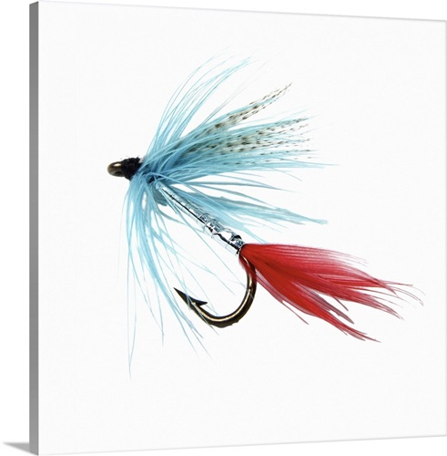 Close up of a fly fishing hook Wall Art, Canvas Prints, Framed ...