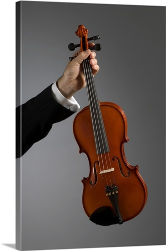 Close-up of a musician\'s hand holding a violin Wall Art, Canvas ...