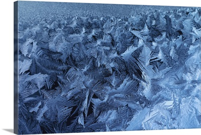 Close-up of ice on glass