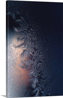 Close-up of icy frost