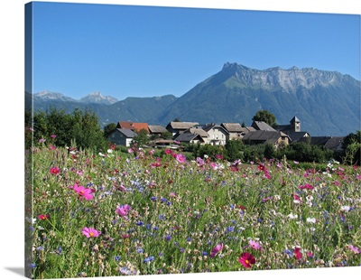 Colorful flowers with houses and mountain in background, France.