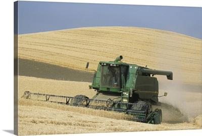 Combine harvester harvesting golden wheat, late Summer, Washington State