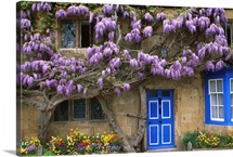 Cottage,  Broadway, Gloucestershire, England, UK