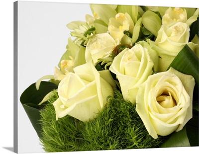 Cream roses, cone flowers [Echinacea], orchids [Cymbidium]
