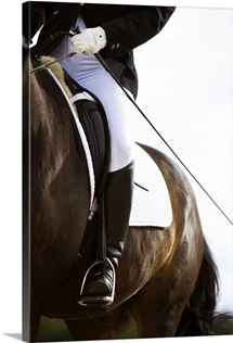 Detail of female dressage rider on horse