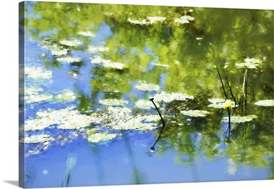 Digital Art, Watercolor Paint Effect, Waterlily In Pond, Reflection In Water