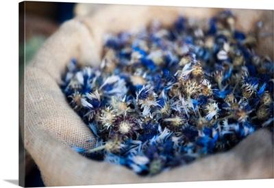 Dried blue flowers in burlap bag.