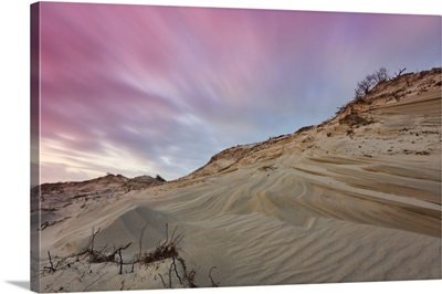 Dune landscape after sunset in West Dune Park, The Hague, Netherlands.