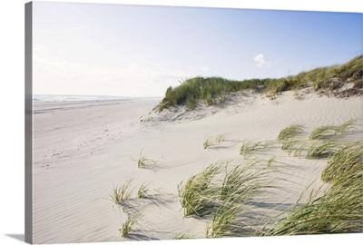 Dunes and beach, Nantucket Island