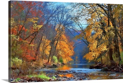 Fall colors in early November along Wissahickon Creek in Fairmount Park.