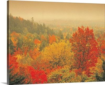 Fall landscape, New Hampshire, USA