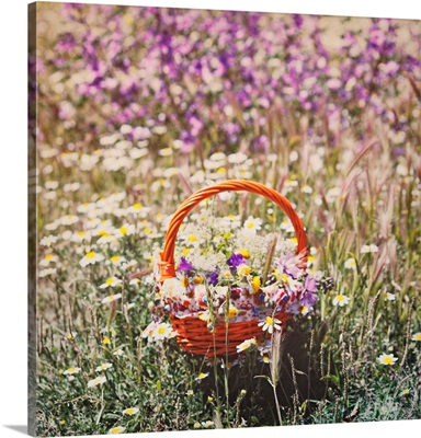 Field of wildflowers, in middle an orange basket with some flowers.