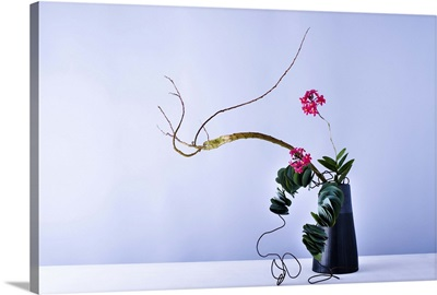 Flower arrangement with wire and eucalyptus leaves