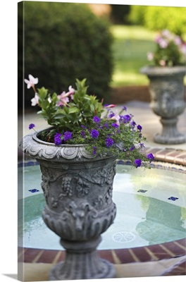 Flowers in decorative urn next to pool