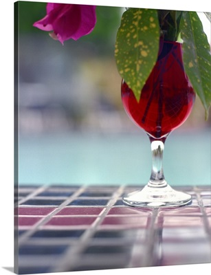 Flowers in glass of red water