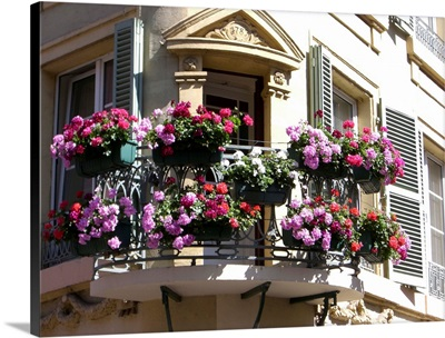 Flowers on a porch, Colmar, Alsace, France