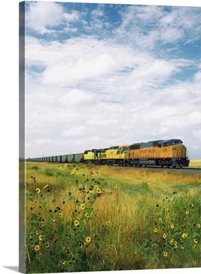 Freight train passing through a field, North Dakota, USA