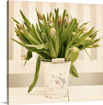 Fresh tulips presented in vintage plant bucket at home.