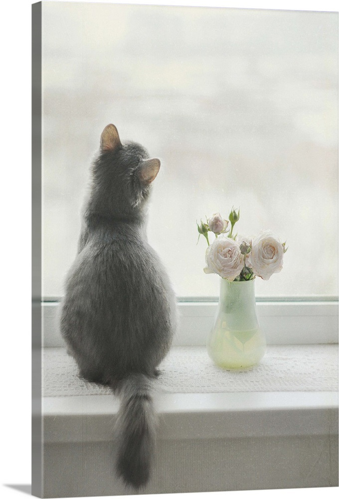 Furry Cat With Flower Vase At Window Sill Waiting Wall Art