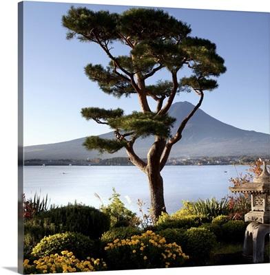 Garden and Lake Kawaguchiko with Mt. Fuji