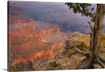 Grand Canyon at dawn, AZ