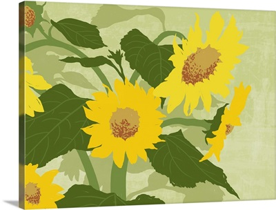 graphic handed painted style illustration of sunflowers