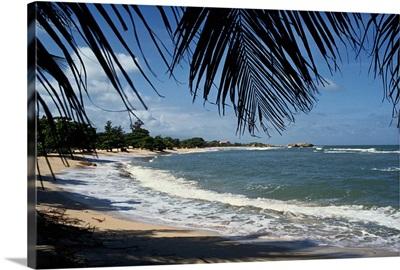 Haitian Beach