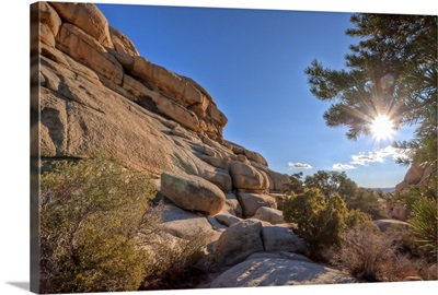 Hidden Valley sunburst, Joshua Tree National Park