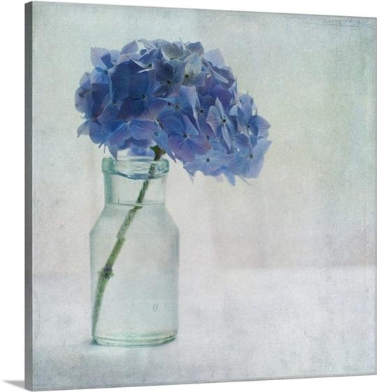 Hydrangea Wall Art hydrangea flower in old glass bottle. wall art, canvas prints
