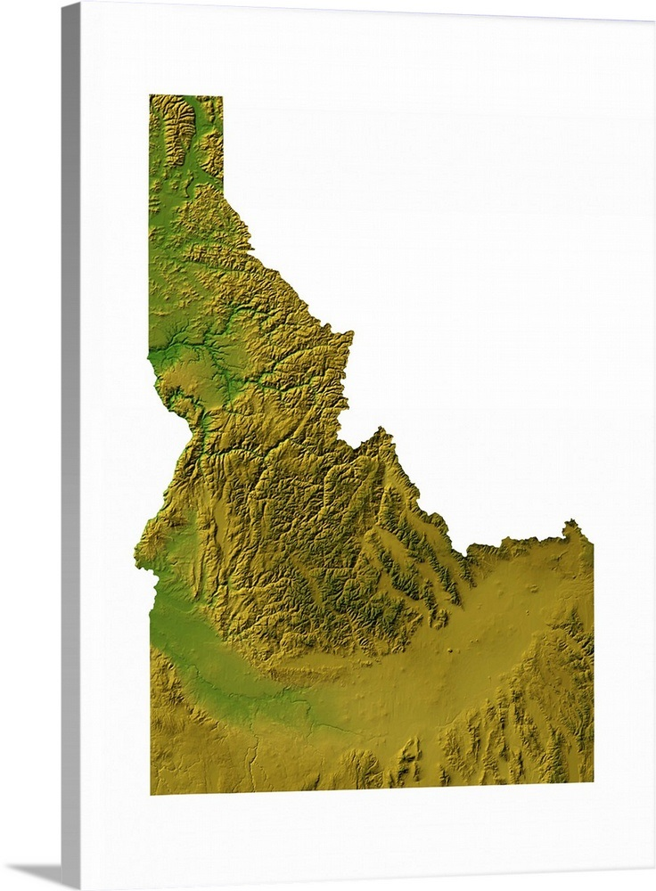 Idaho Topographic Map Wall Art Canvas Prints Framed
