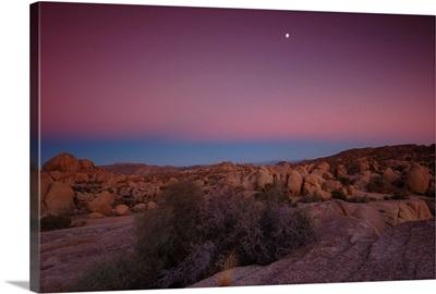 Jumbo Rocks at dusk