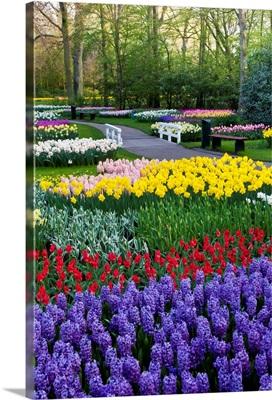 Keukenhof Gardens Near Lisse In Springtime Bloom