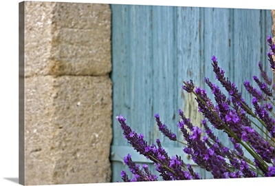 Lavender flower against door.