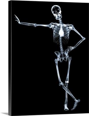 Leaning skeleton against black background