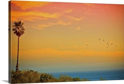 Light of sun setting on  Malibu beach and birds flying.