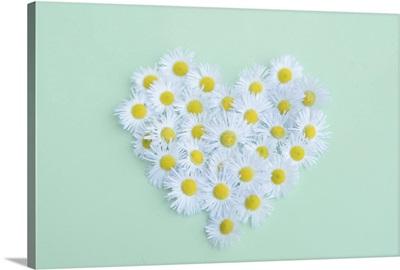Little daisy in heart shape.