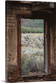 looking out of an abandoned adobe cabin to see sage brush and dead grass