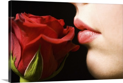 Luscious lips and soft rose