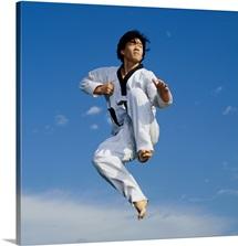 Martial Artist Jumping