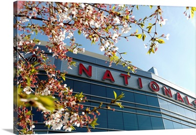 Miami Marlins v. Washington Nationals