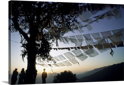 Monks with prayer flags , Nepal