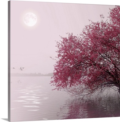 Nature and landscape. Red tree on a lake. Moon in the distance.