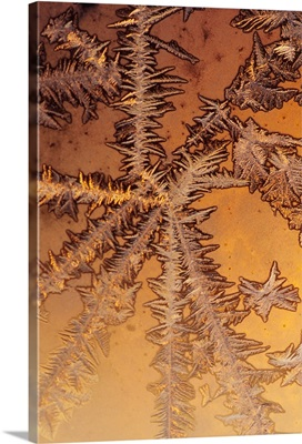 Pattern of ice crystals on glass