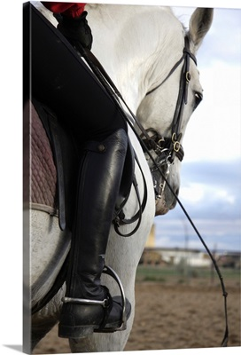 Person on horseback with foot in stirrup