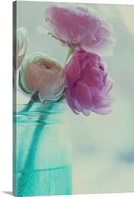 Pink and white ranunculus flowers in aqua colored vase.